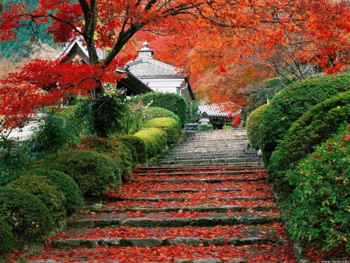 Понятие прекрасного у японцев