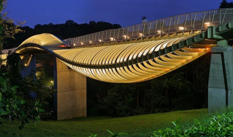 Мост «Волны Хендерсона» в Сингапуре
